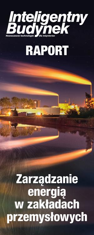 Raport Zarządzanie energią w zakładach przemysłowych | skyscraper